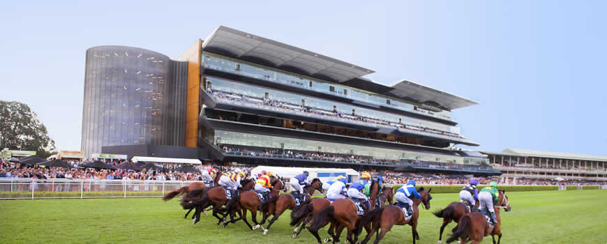 bledisloe-cup-lunch-randwick